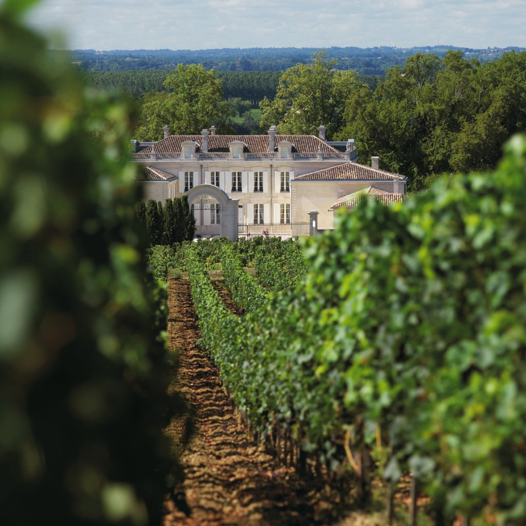 Chateau de La Dauphine: the vineyards and the chateau