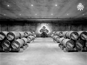 Bodegas RODA, the barrel room