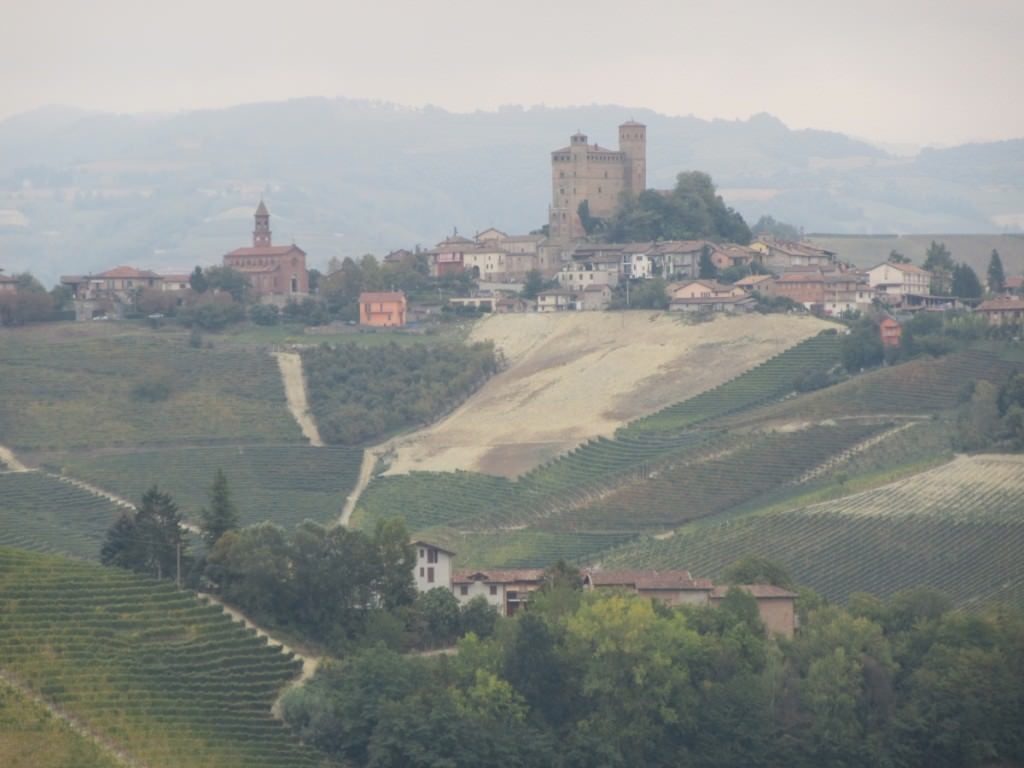 Optimized-vietti (2)